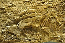 Assyrian Army Tactics