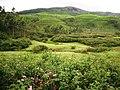 Devikulam beautiful Views - panoramio.jpg