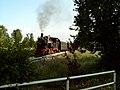 Die Heidekrautbahn - panoramio.jpg
