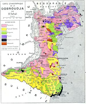 Dobrogea Wikipedia