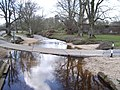 Dockens Water, New Forest - geograph.org.uk - 760090.jpg
