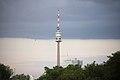 Donauinselfest Vienna 2013 FM4-planet.tt-Insel Donauturm 03.jpg