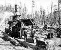 Donkey engine and crew with little girl, Goodyear Logging Company, near Clallam Bay, ca 1920 (KINSEY 2061).jpeg