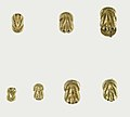 Double knot clasp of Sithathoryunet MET 16.1.15b 54 56 57 14b 53 52.jpg