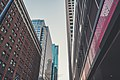Downtown Minneapolis Skyscrapers - Buildings (40110850832).jpg