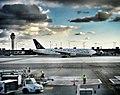 Dulles International Airport Star Alliance (29468285).jpeg