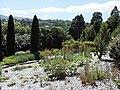 Dunedin Botanic Garden kz01.jpg
