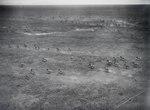 ETH-BIB-Fliehende Zebras in der Serengeti aus 20 m Höhe-Kilimanjaroflug 1929-30-LBS MH02-07-0058.tif