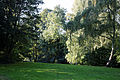East from Horse Pond Little Easton Essex England 3.jpg