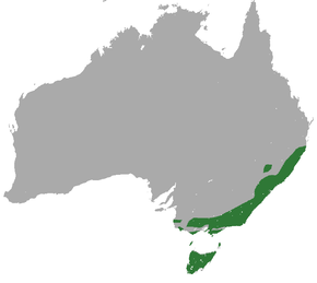 Description de l'image Eastern Pygmy Possum area.png.