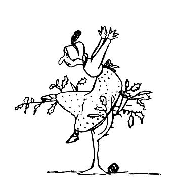 Edward Lear A Book of Nonsense 58.jpg