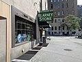 Elizabeth Berger Plaza 21 - Blarney Stone.jpg
