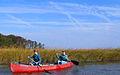 Enjoying the marsh in the fall (6286674108).jpg