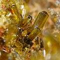 Epidote crystals.jpg