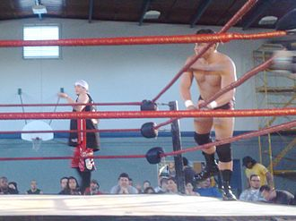 Jack Evans (wrestler) - Evans (left) entering the ring with his Generation Next partner, Roderick Strong.