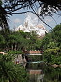 Expedition Everest au loin.JPG