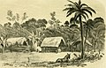 Exploration of the valley of the Amazon (1853) (14782163424).jpg