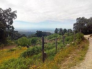 Falda sur Sierra de Gredos. Vista hacia Talaveruela.jpg