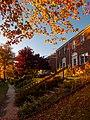 Fall Walk (55084812).jpeg