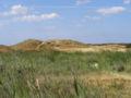 Fanø Golf Links 4.jpg