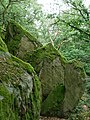 Felsformation auf dem 3-Burgen Weg im Burghain Falkenstein.jpg