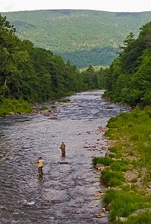 Esopus Creek Tributary of the Hudson River in the Catskill region of New York state