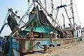 FishingBoatsAlvarado02.JPG