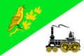 Flag of Zelenograd-Kryukovo (municipality in Moscow).png