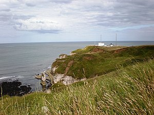Seawatching - Flamborough Head is a good place for seawatching