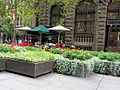 Flower stalls in Martin Place.jpg