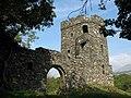 Folly Foot Castle - geograph.org.uk - 1360919.jpg