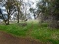 Folsom Lake trails 603 - panoramio.jpg
