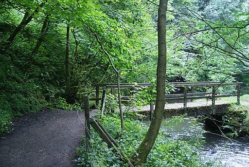 Footbridge in Beresford Dale (geograph 3675711)