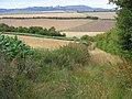 Footpath in farmland, Manningford Bruce - geograph.org.uk - 1560528.jpg