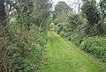 Footpath south of Shotley Hall towards Shotley village - geograph.org.uk - 941137.jpg