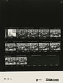 Ford B1709 NLGRF photo contact sheet (1976-09-30)(Gerald Ford Library).jpg