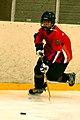 Four-Nation Hockey Tournament 13 (4397135243).jpg