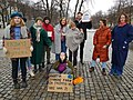 Fridays For Future in Oslo, Norway.jpg