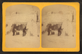 Frost work on Mt. Washington, from Robert N. Dennis collection of stereoscopic views.png