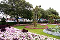 Garden, Clacton-on-Sea, Essex - geograph.org.uk - 2037458.jpg