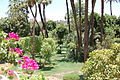 Gardens at the Winter Luxor Palace-4775055059.jpg