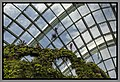 Gardens by the Marina Bay - Dome Clouds 03 (8353162778).jpg