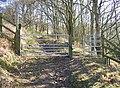 Gate, Tong Royd, Elland - geograph.org.uk - 689325.jpg