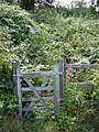 Gate and overgrown path beside the A487 - geograph.org.uk - 209964.jpg