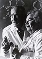 George Hitchings and Gertrude Elion 1988b.jpg