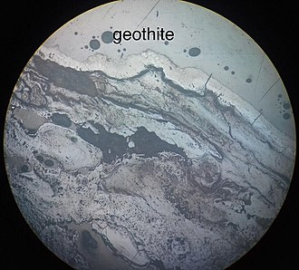 Goethite - A microscopic picture of Goethite (name misspelled on picture)