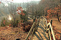 Gfp-missouri-castlewood-state-park-staircase-path-at-castlewood.jpg