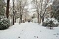 Giardini Pubblici Gorizia with snow (3).jpg