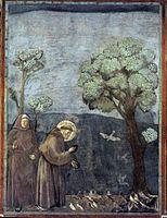 Το κήρυγμα στα πουλιά, νωπογραφία, 1295-1299, Ασίζη, Άνω Βασιλική