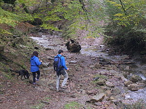 Outdoor recreation - Trekkers in Gorbea park, south of Biscay in Basque Country, Spain